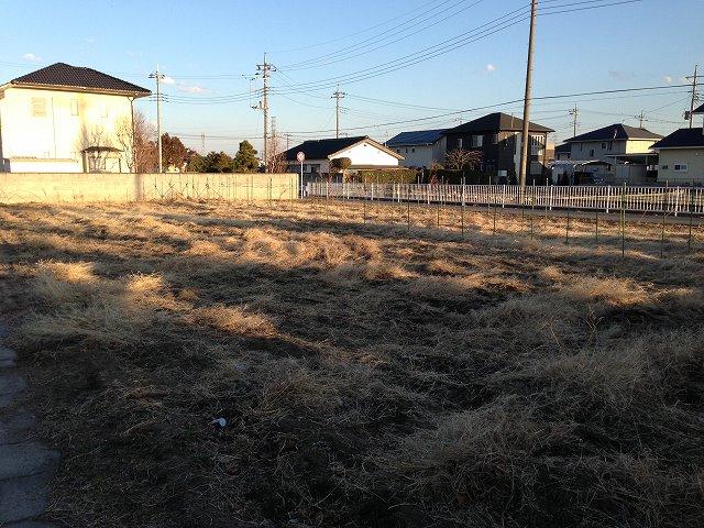 稲荷台の畑